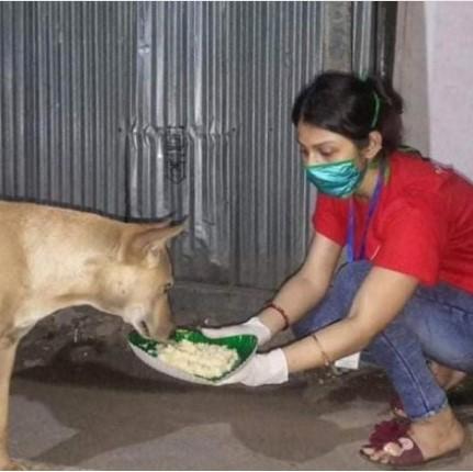 A Pawsome member feeding a Stray dog at night. Image credit: Tripura Infowa
