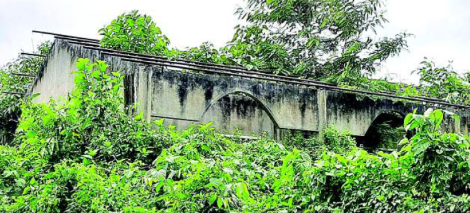 The incomplete Mini ITI building at Bagarijuri covered by jungle